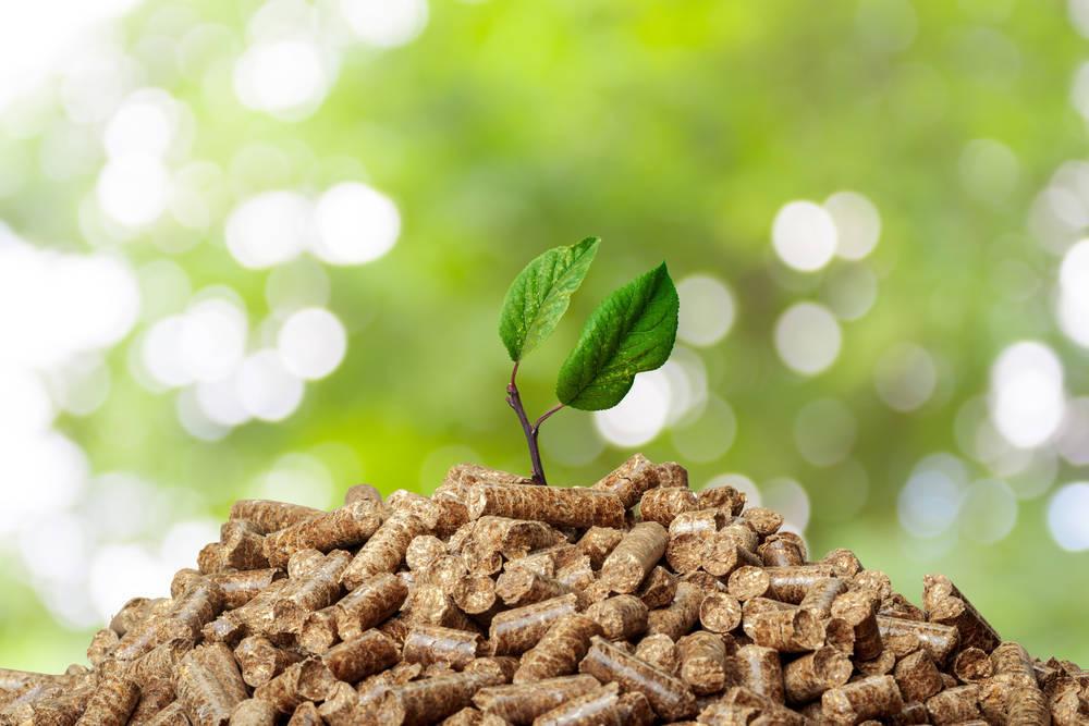 Beneficios de la energía con biomasa