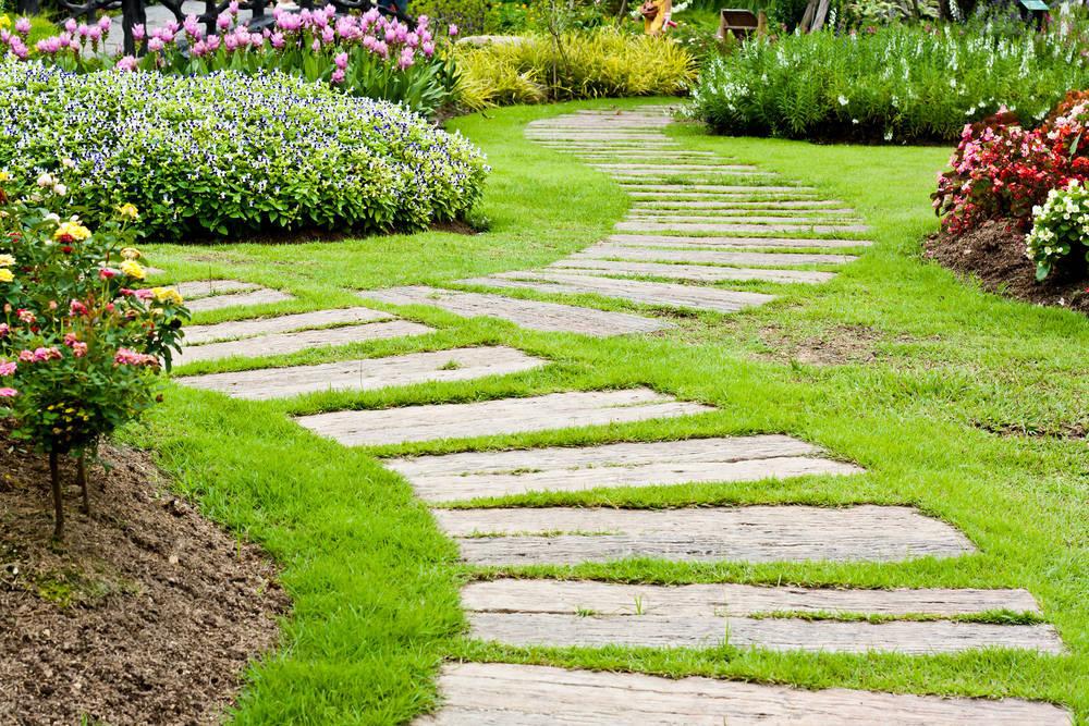 Algunos Consejos para Jardineros Principiantes